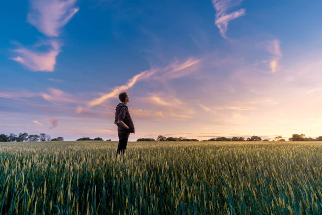 man standing in field at sunset looking up to heaven thankful that he is on a path to understanding bible contradictions