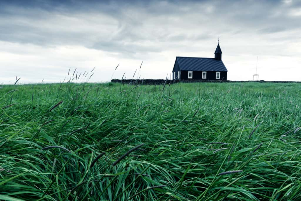 Church and green grass