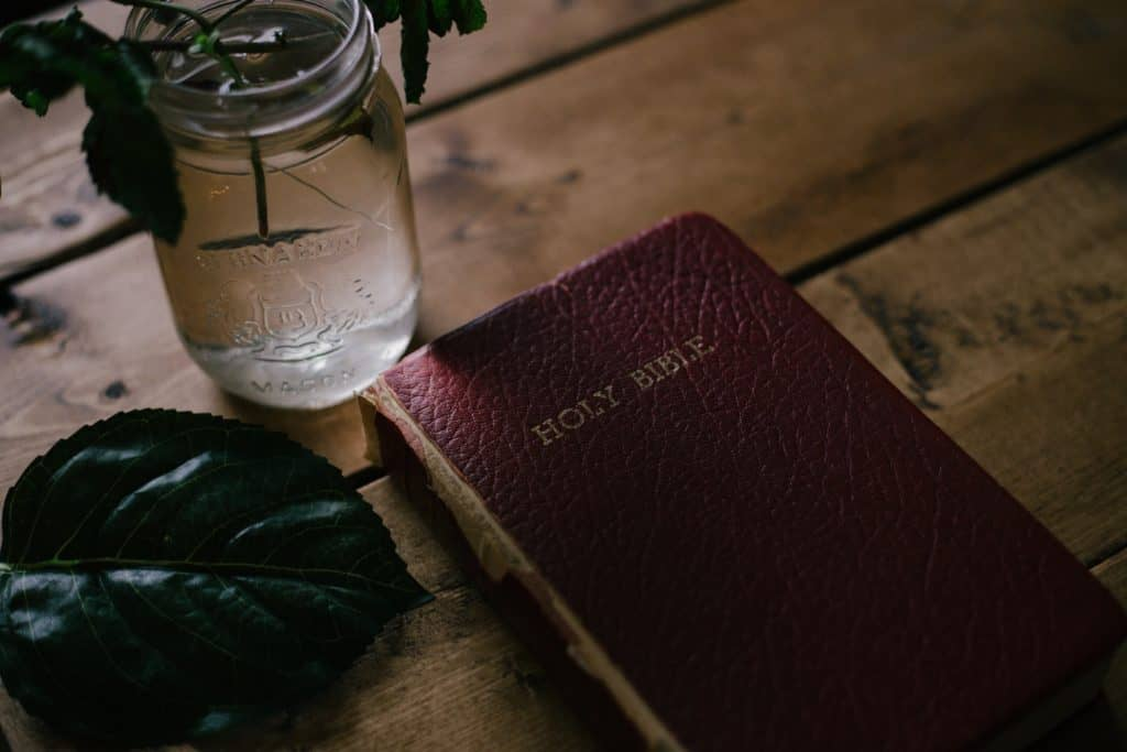 Closed Bible on a table beside a mason jar with a plant in it