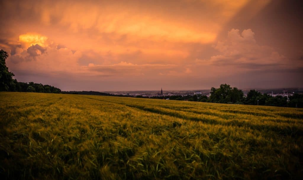 Landscape of a field at sunset with a town in the background