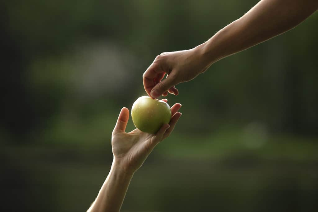 A person handing an apple to someone.