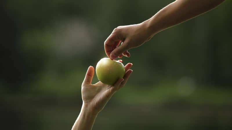 a woman's hand passing a green apple upwards to a man's hand as a symbol of sin coming to the earth