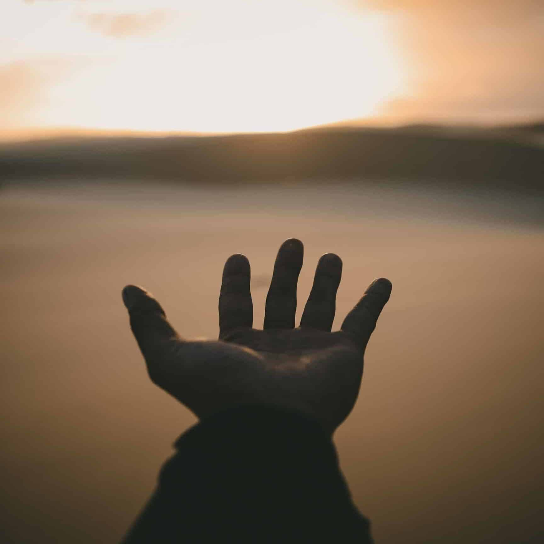 A hand reaching out to the sunset.