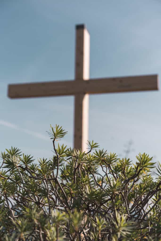 The cross in the background with a bush in the foreground.