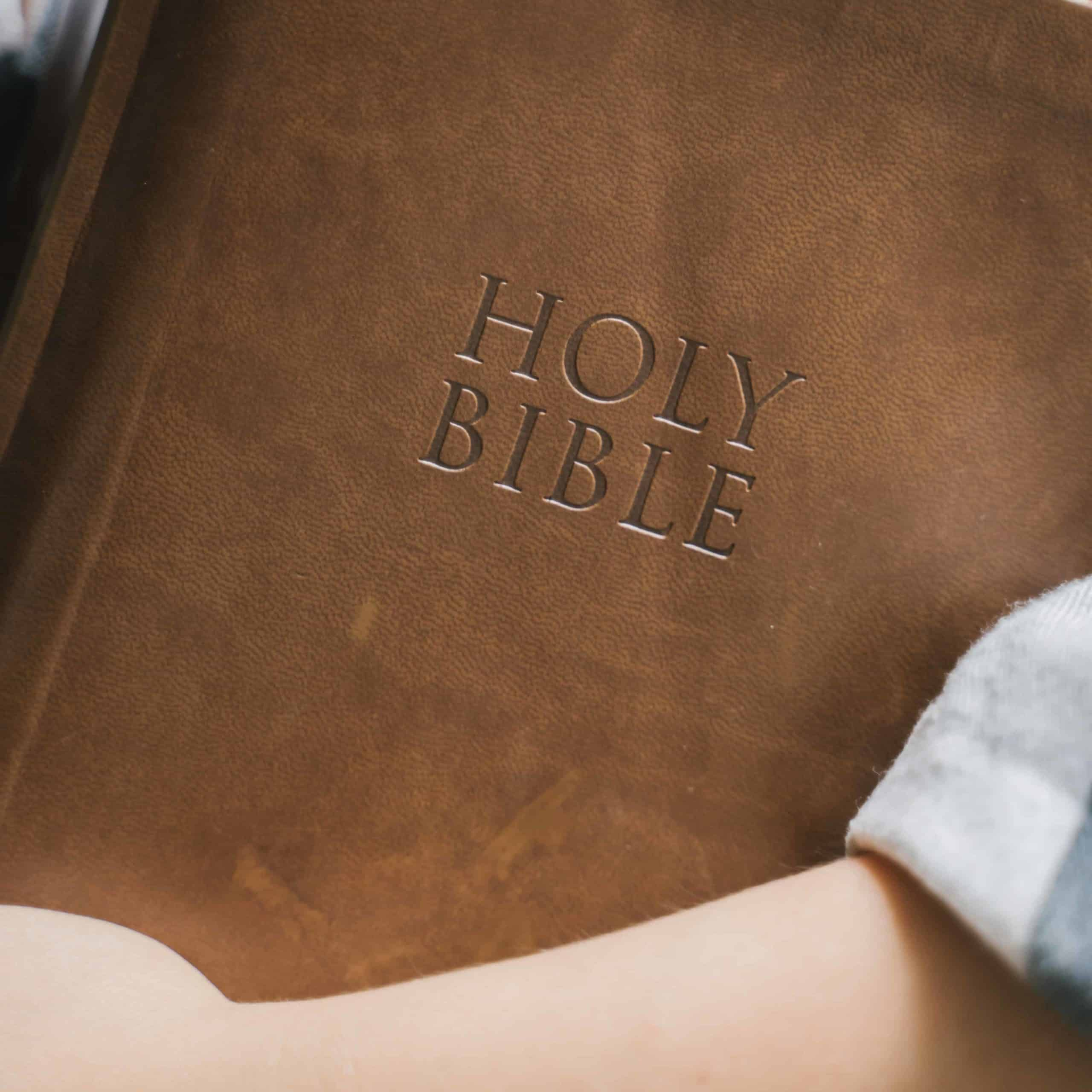 A close up of someone holding a Bible.