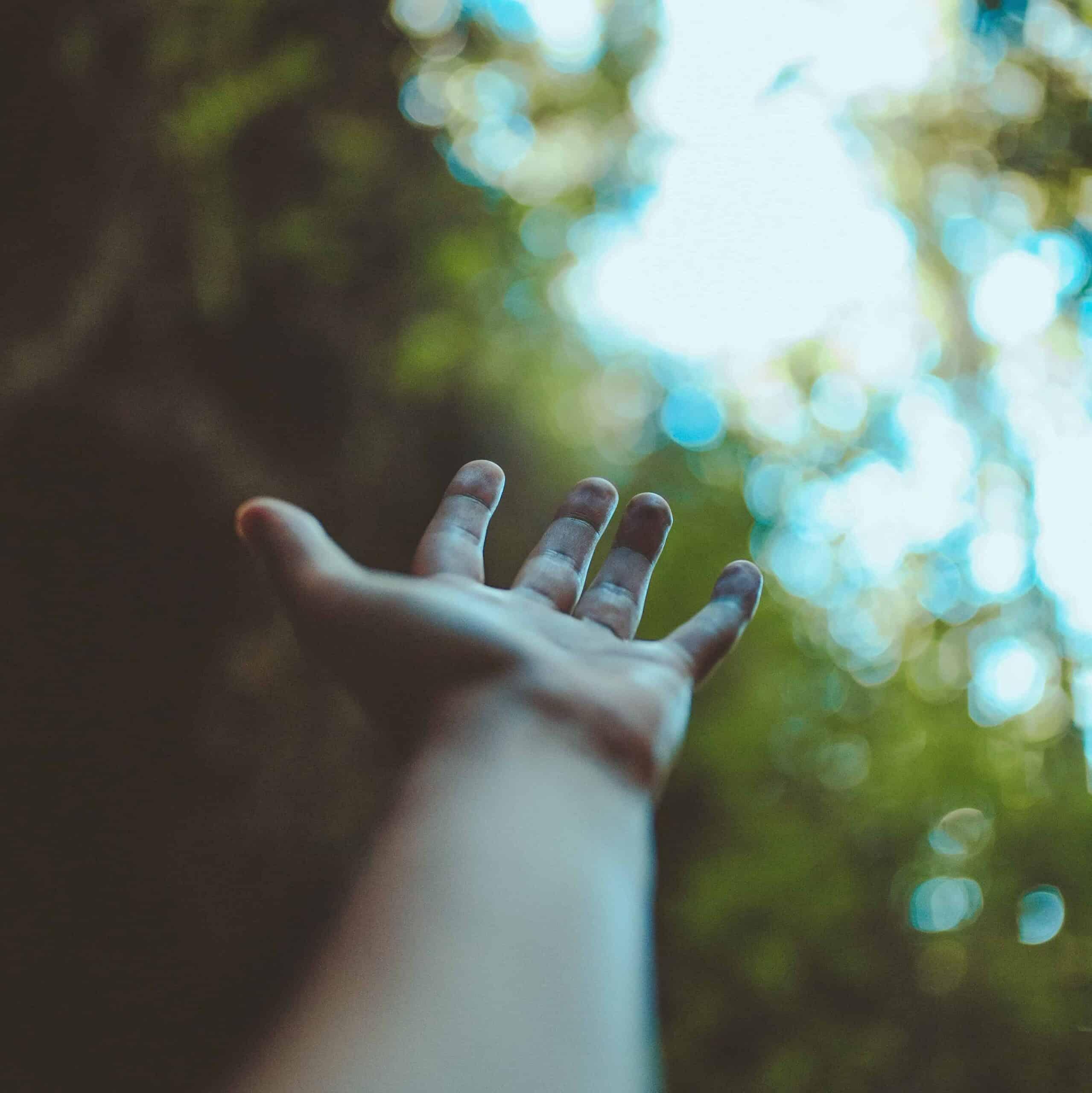 A hand reaching towards the sky.